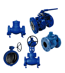 general valves
