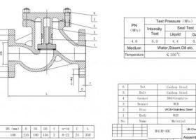 PFA Lined Through-Way Lift Check Valve – EH41PFA